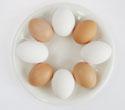多くのたまごでもコレステロールが増加するわけではない